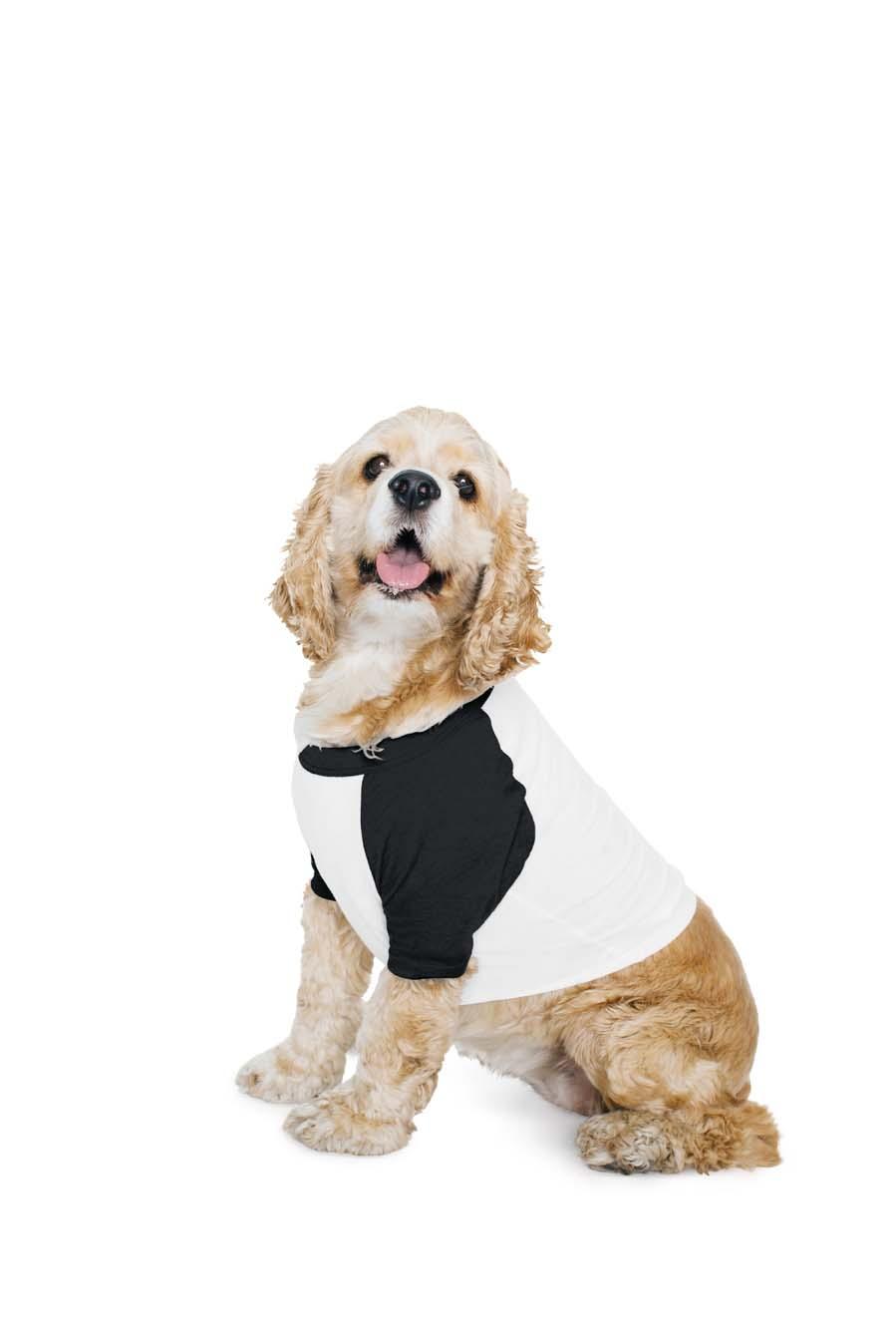 AMA Dog T-shirt